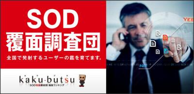 ソフト・オン・デマンド(株)kaku-butsu九州の男性求人